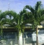 ofw-real-estate-investment